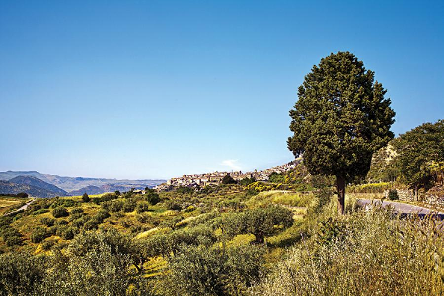 Grand Sicilian vistas were part of the commemorative tour