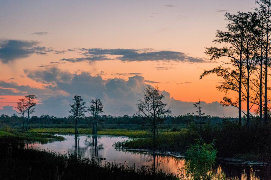 Sunset Atchafalaya delta