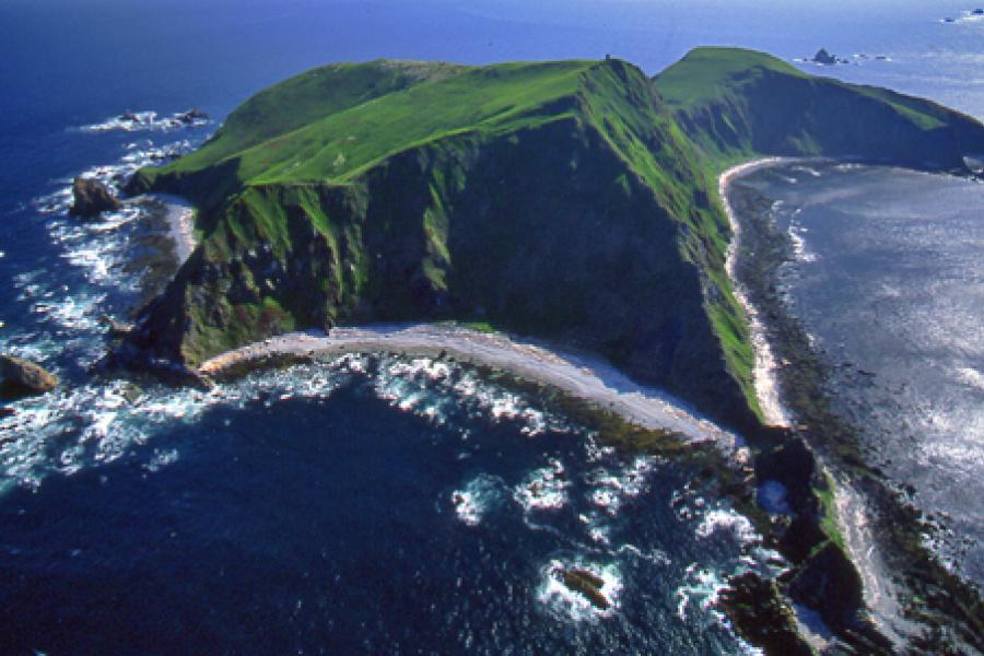 Triangle Island is the westernmost island in the Scotts Island archipelago, which supports the highest concentration of breeding seabirds in the Canadian Pacific.