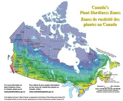 Map Of Canada Resources.Plants Hardiness Map Looks A Lot Like A Canadian Population Map