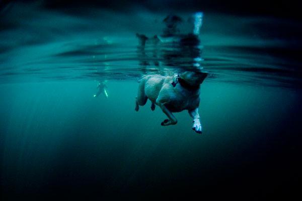 Photo: Drew Glaser