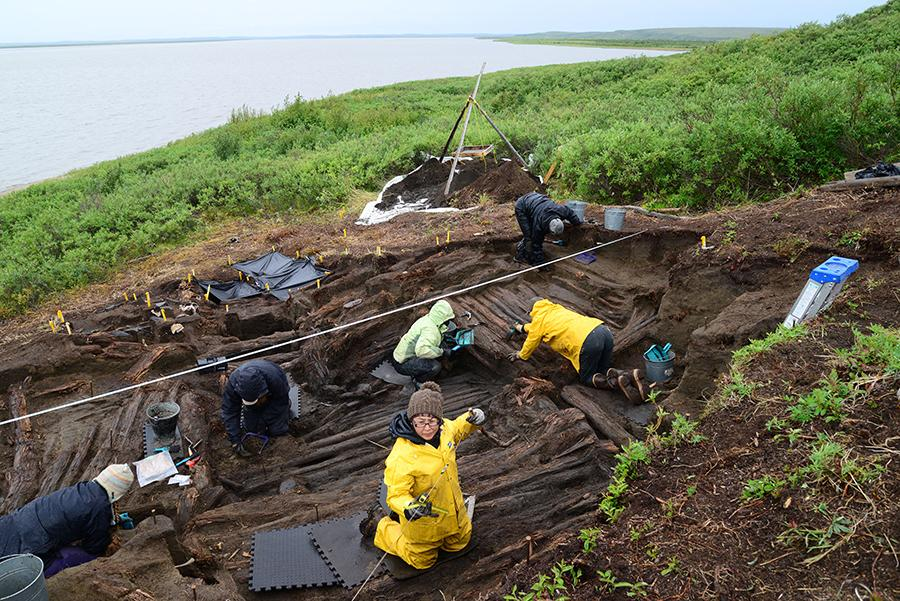Excavation of the large Kuukpak sod house, nearing completion.  In the foreground, Letitia Pokiak excavates the rear  alcove. (Photo: Max Friesen)