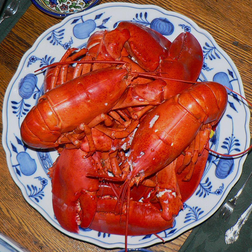 Boiling is a common way to prepare lobster in Maine. However, there are many more alternative ways to ingest the tasty crustacean. (Photo: Claude Covo-Farchi/Wikimedia Commons)