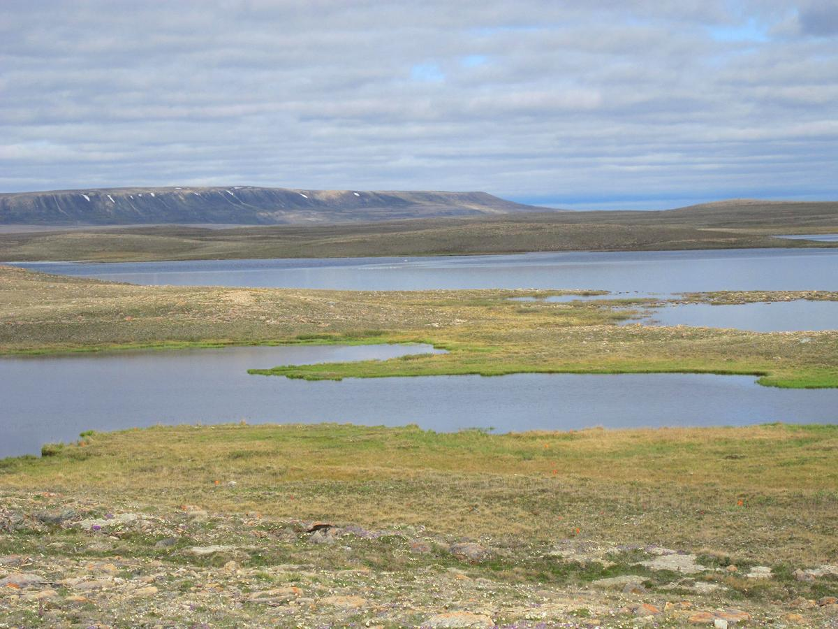 The landscape around Cambridge Bay, Nunavut