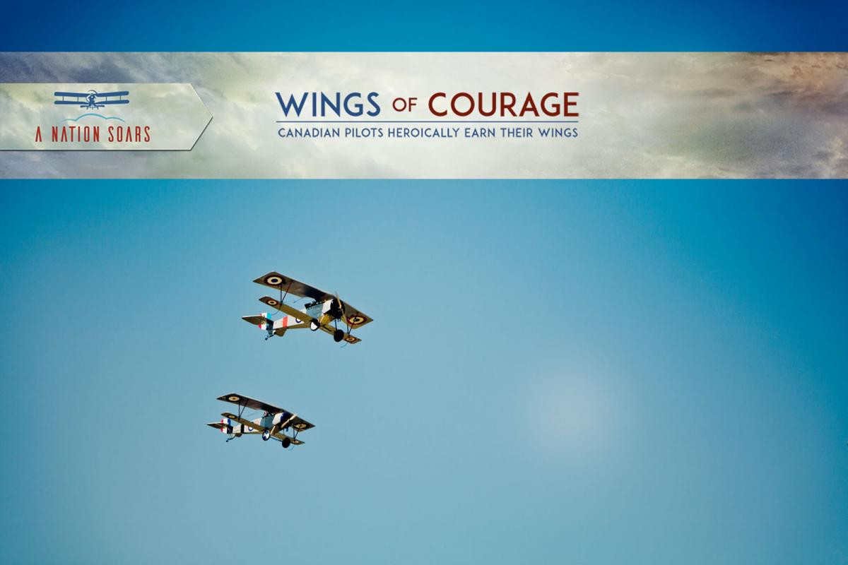 Wings of Courage biplanes