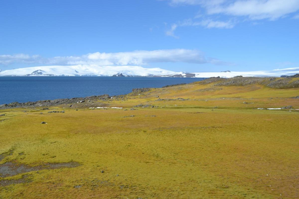 Antarctic greening, Antarctic Peninsula, climate change