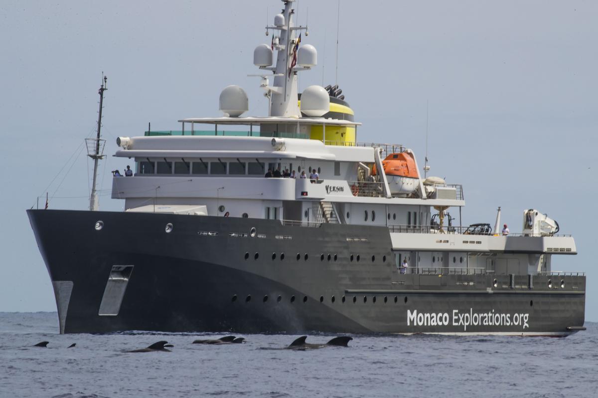 yersin boat