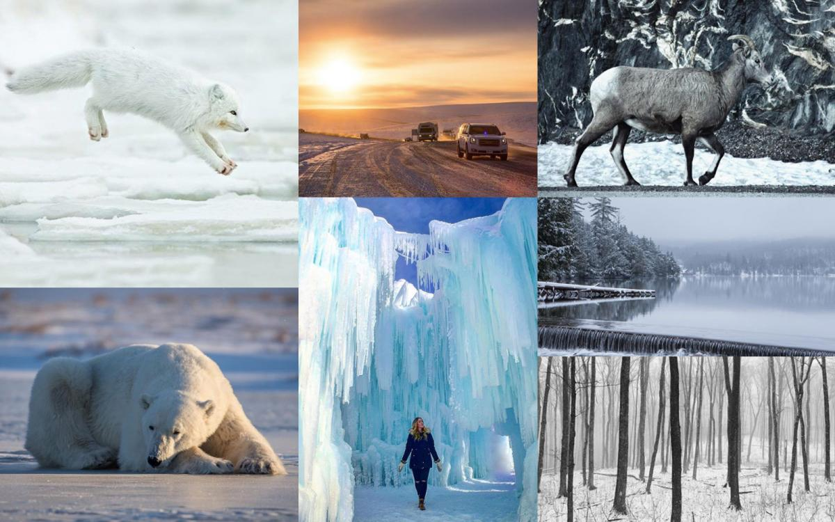 Wintry scenes from Can Geo's Instagram community