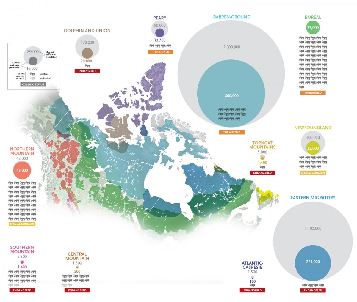 dwindling caribou map