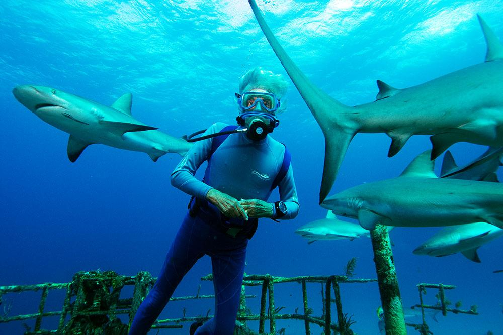 Jean-Michel Cousteau scuba diving near sharks on a shipwreck