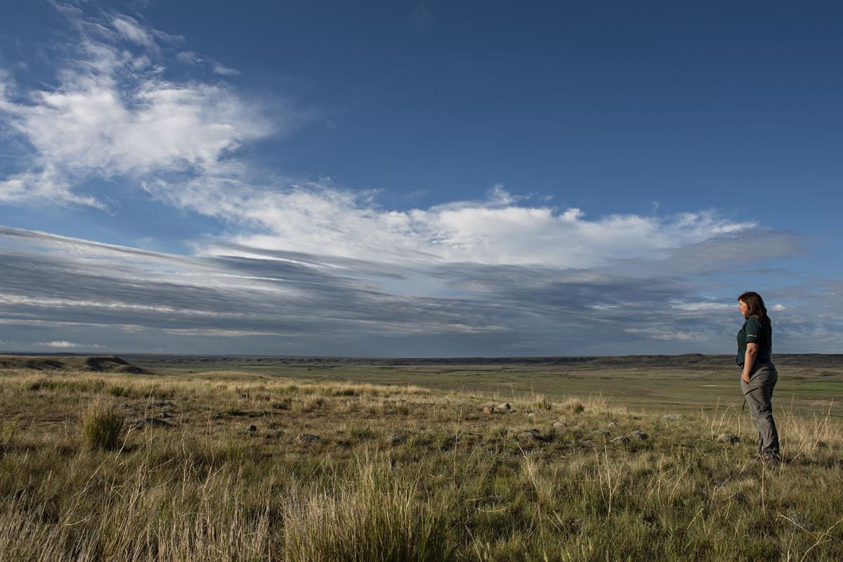 A woman stands alone looking out over an empty prairie under a cloudy blue sky