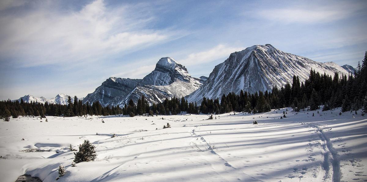 Banff National Park snow