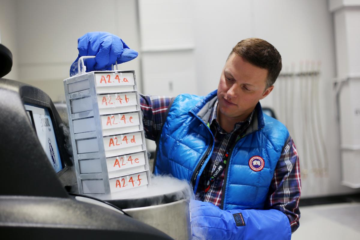 Frozen tissue samples at national biodiversity cryobank of canada