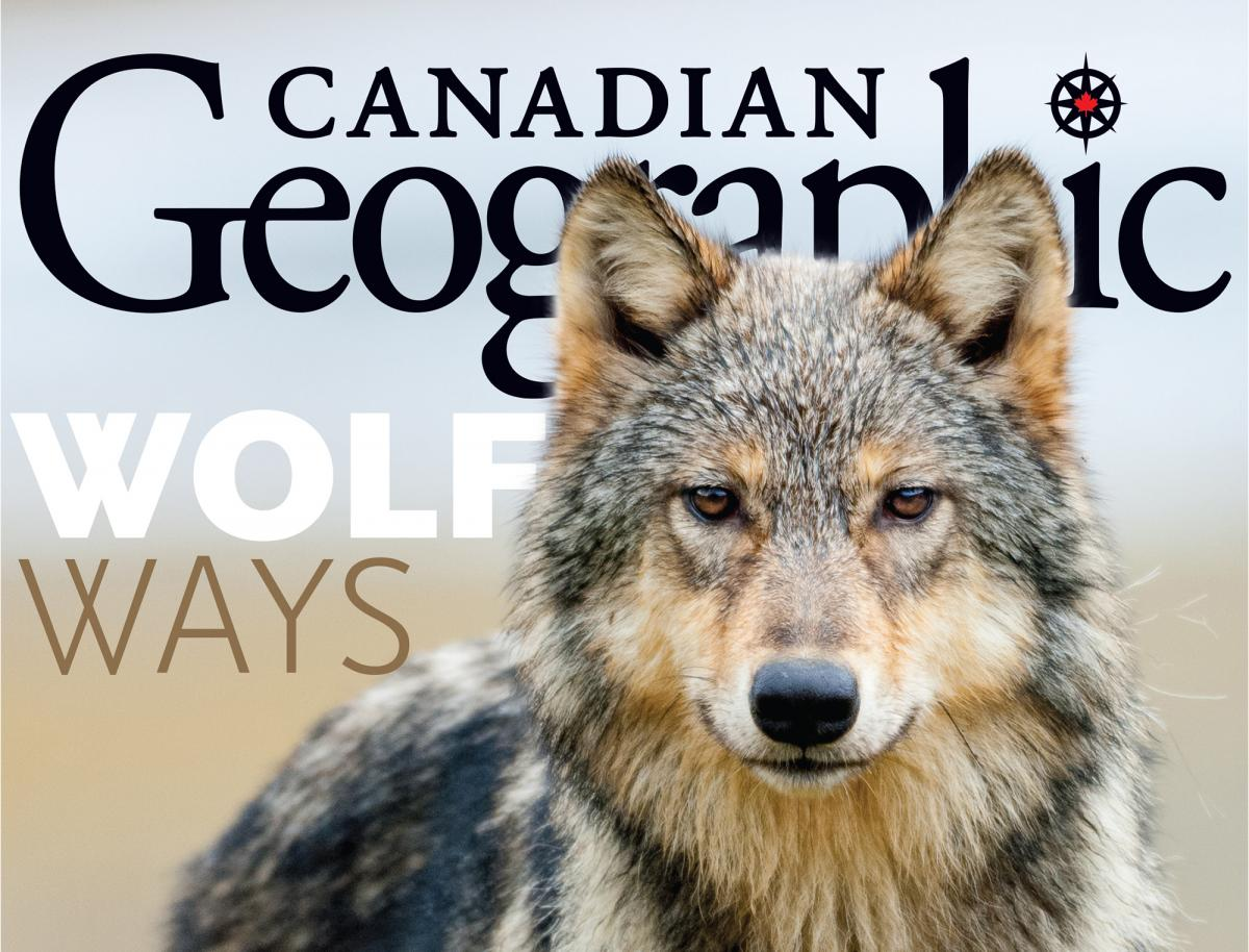 Canadian Geographic, November/December 2019 cover, Wolves