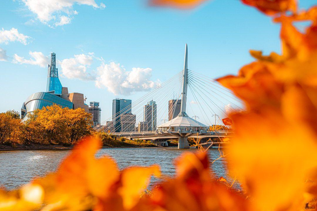 Downtown Winnipeg framed by fall leaves