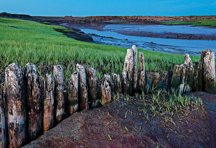 Dikes built more than 300 years ago still hold Fundy's tides from Acadian farmland