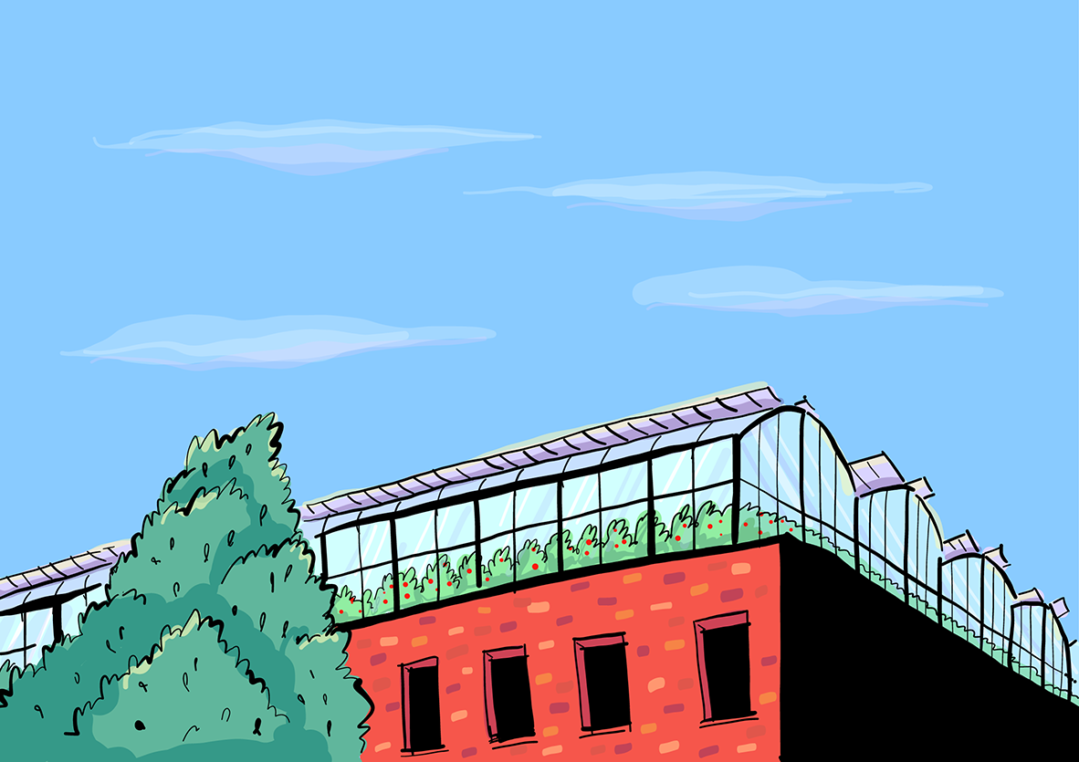 An illustration of a rooftop farm