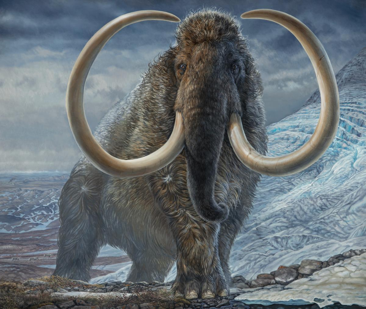 A woolly mammoth with large curling tusks wanders through an icy landscape under billowing grey clouds