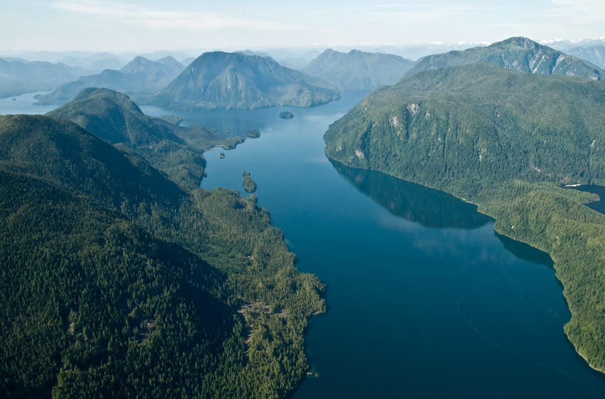 An aerial photo of the Great Bear Rainforest