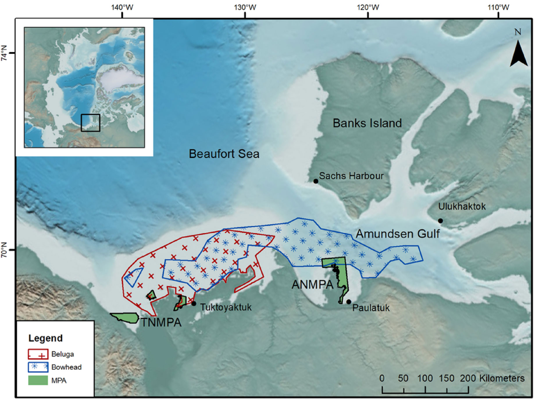 A map showing beluga and bowhead whale territory overlaid on existing Marine Protected Areas